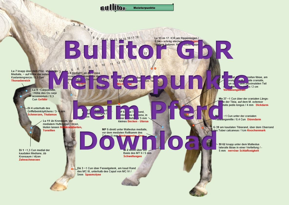 Meisterpunkte beim Pferd, Extra Set - Download